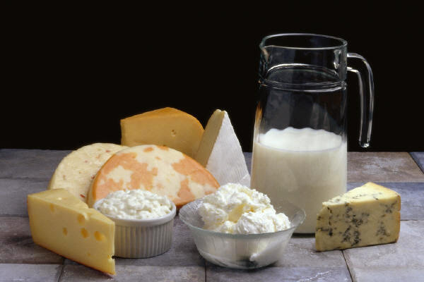 dairy-products-milk-cheese